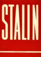 kniha Stalin - Miron Borisovič